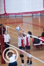 sports (2)