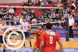 volleyball (17)