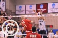 volleyball (6)