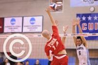 volleyball (7)