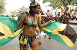 2014 West Indian Labor Day Parade by: Verity Rollins