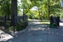 My Brooklyn (10)