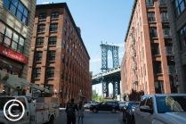My Brooklyn (20)