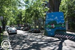 My Brooklyn (5)