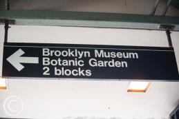 My Brooklyn (69)