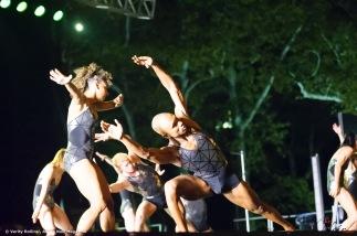 SummerStage16 (11)
